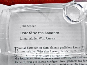 Schoch Buch2